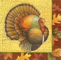 Turkey Napkin Photo